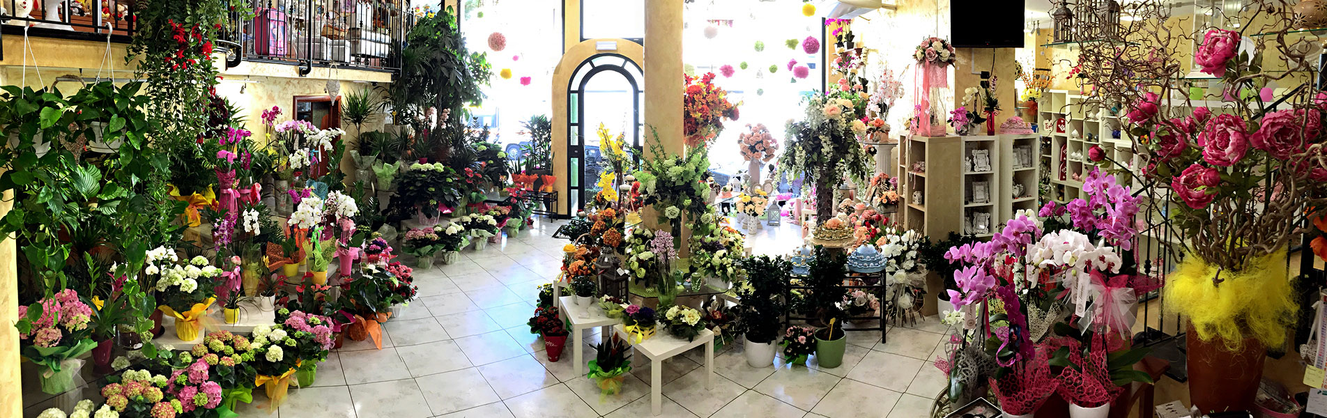 Negozio-Flower-Shop_2